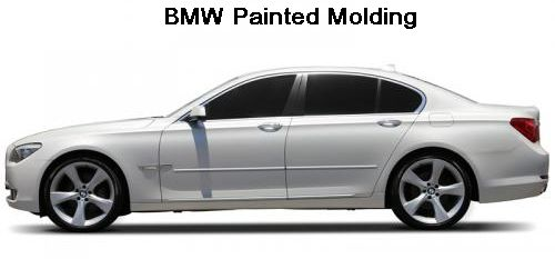 BMW Vehicles Painted Molding