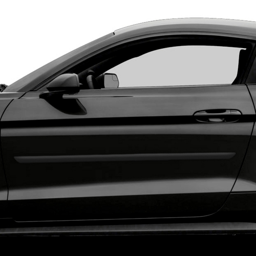 FORD MUSTANG PAINTED BODY SIDE MOLDING 2005 - 2019