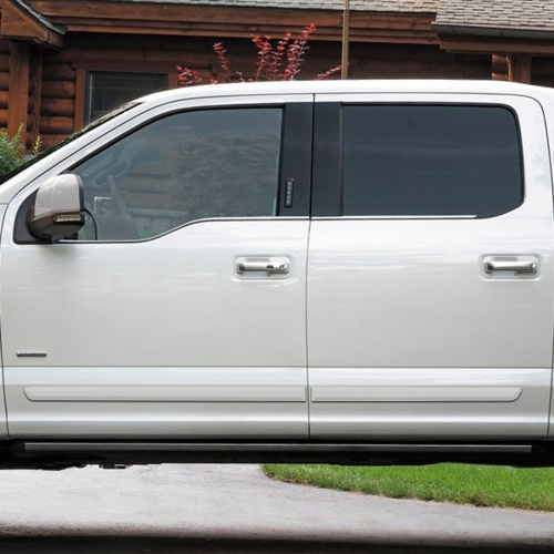 FORD F-150 SUPERCREW PAINTED BODY SIDE MOLDING 2015 - 2019