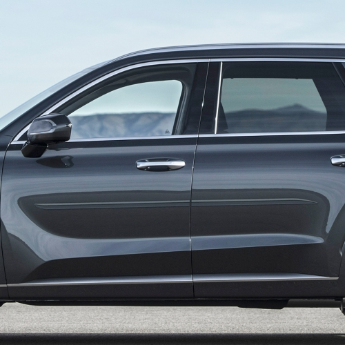 HYUNDAI PALISADE PAINTED BODY SIDE MOLDING 2020 - 2022